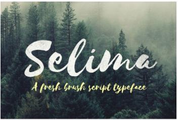 Free Font - selima